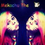 Mekachuthepikachu