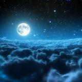 Midnight_lee
