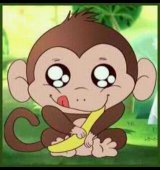 Monkeylover