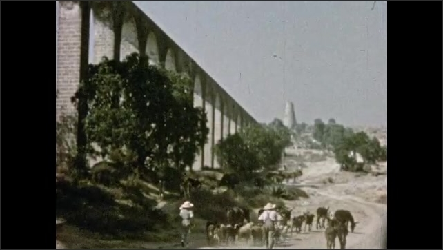 Mexico 1950s: People herd donkeys and goats down road, next to large aqueduct.