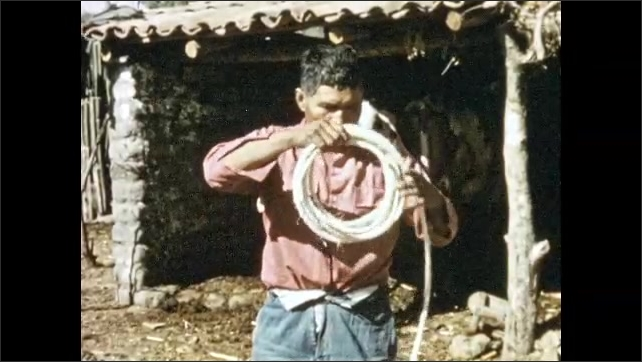 Mexico 1950s: Man coils rope, takes off hat, throws hat on ground. Man stands by carts full of plants, guides bull.