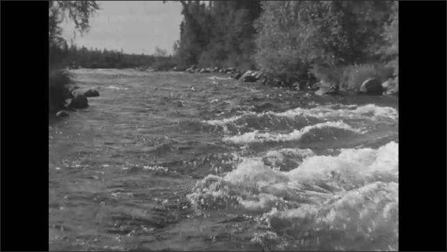 UNITED STATES 1950s: Man on boat pulls fish from water / Man holds up fish, puts it back in water / View from boat, moving up river.
