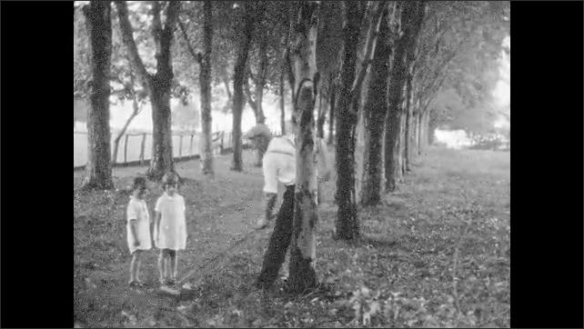 1930s: UNITED STATES: man rakes up leaves under tree. Children watch man rake leaves