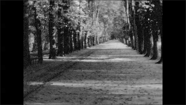 1930s: Girl struggles with dog on leash. Tree-lined road. Girl and dog play and run on long tree-lined road.