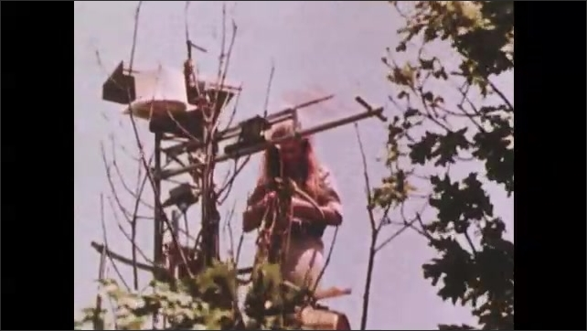1970s: Arms adjust device in trees. Woman stands on tower in trees adjust science equipment. Plants are partitioned out in nets for experiment.
