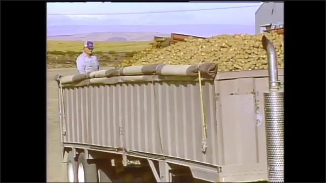 1990s: People process potatoes. Potatoes travel along conveyor belts into truck. People package potatoes in factory. Peeled potatoes move along conveyor belts.