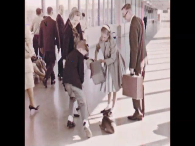 1960s: Children run and embrace parents in airport. Stewardess brings dog on leash toward family. Family wave and walk through airport. Plane takes off from runway.