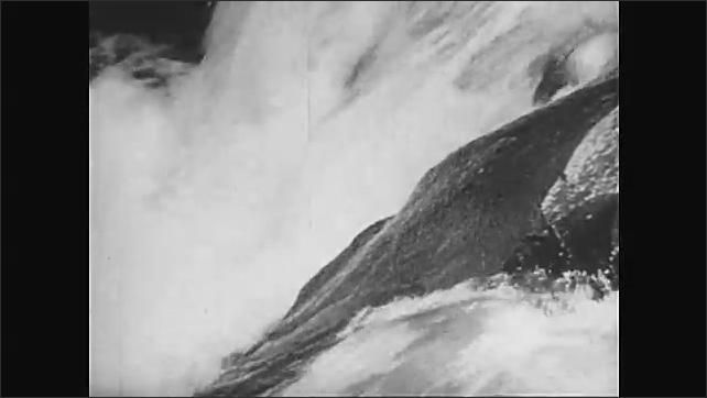 1950s: Waves and beach. Columbia river. Salmon jump up river. Bear wades into river, snatches up fish.