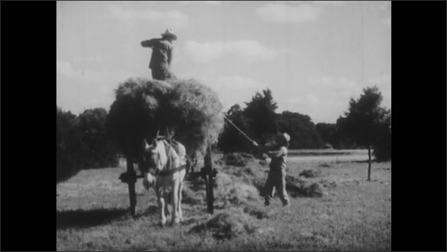 1940s: UNITED STATES: farmer loads hay onto cart. Plane in sky. Flags blow in wind. Clouds in sky. Ship at sea.