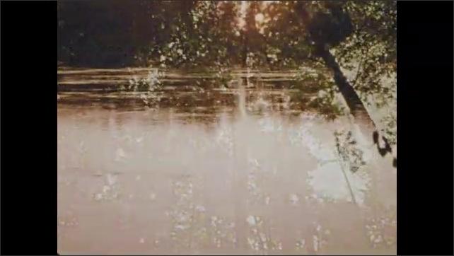 1970s: Sunlight. Bird flies. View of sky through trees. Body of water. Woman reads bible.