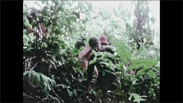 1960s: Man sit together under tent. Men walk through jungle. Men hold raft outside capsule.