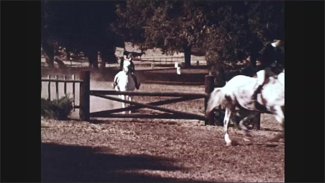1970s: UNITED STATES: divers jump from board. Horse riders jump over fences. Ballet dances perform exercises on bar.