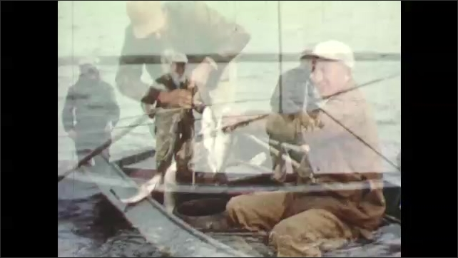 1950s: Three men stand in boat, fishing. Man pulls small fish from water. Men add newly caught fish to line with other fish and place it in water.