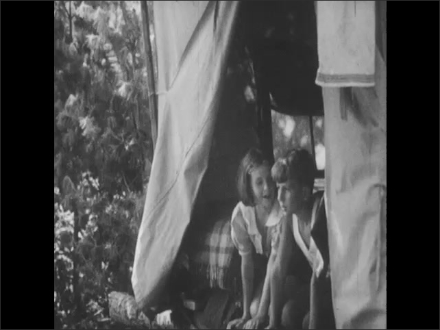 1950s: Two black bear cubs walk through forest, find bacon hanging from tree and eat it. Boy and girl in tent watch cubs eat bacon. Cubs eat bacon from tree.