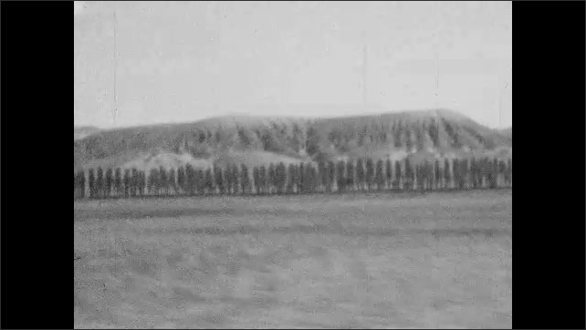 1920s: EUROPE: line of trees in valley. Mountains in distance. View towards hills