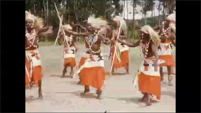1960s: African tribesmen dance, wear costumes and jump synchronized. Men dance and move their feet with ankle bells, trees in background. Group of men in white vests play drums and other instruments.