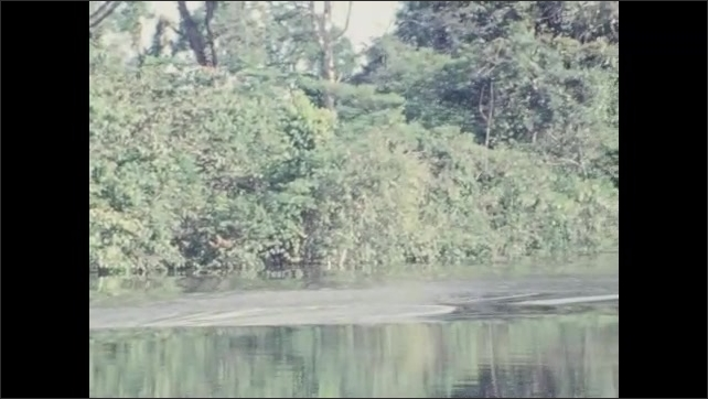 1970s: People travel on boat down river. Trees.