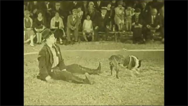 1940s: dog barks at clown on ground in circus ring, dog digs sawdust, sawdust sprays over clown, elephant at lemonade stand, trunk drinks bowl of lemonade, trunk sprays water over clown on ground