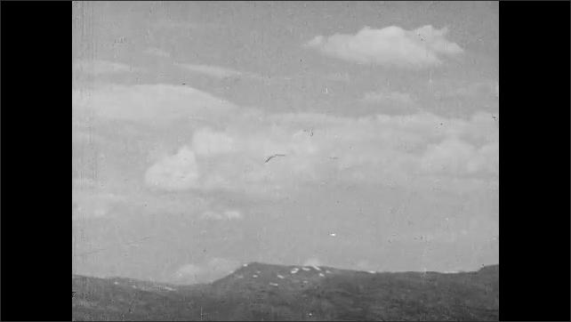 1950s: Ocean.  Mountains.  Bird.  Fishing boats.
