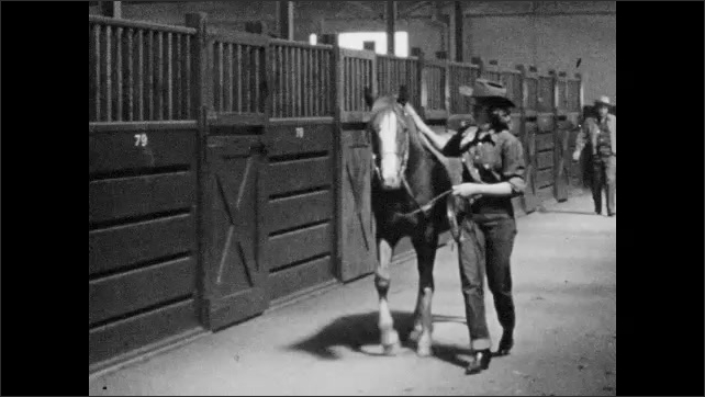 1950s: Girl grooms horse, walks horse down hallway. Girl sits on horse, listens to man talk. Girls sit on horses, wait.
