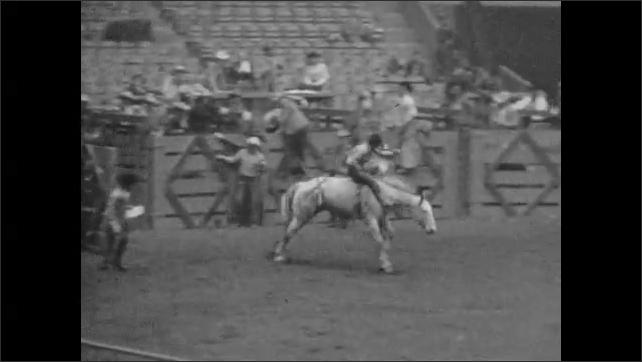 1950s: Men ride bucking broncos in arena.