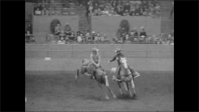 1950s: Men ride bucking broncos in arena.