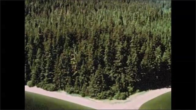 1960s Alaska: Bayshore and pine forests in hills of Alaska.