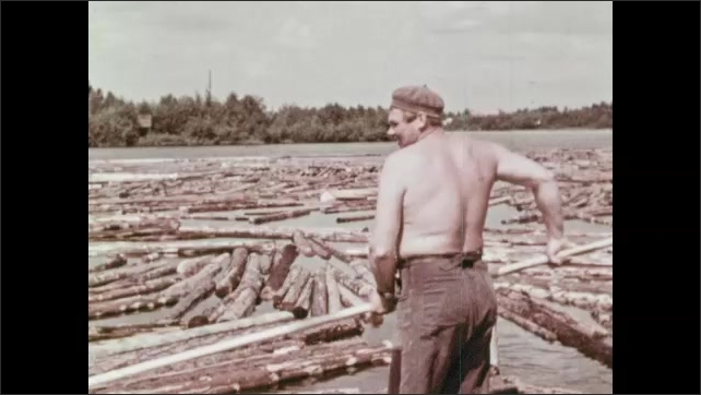 1950s: Water spills out of dam. Water spilling out from dam. Man uses long stick to push logs in river around. Man at work. Logs go up conveyor belt from river into building.