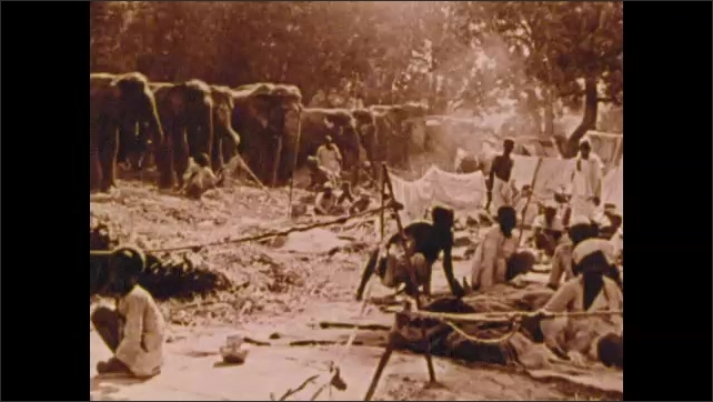 1900s: Busy city street.  People ride elephants.  Man cooks.  Men pull rickshaws.  People talk.