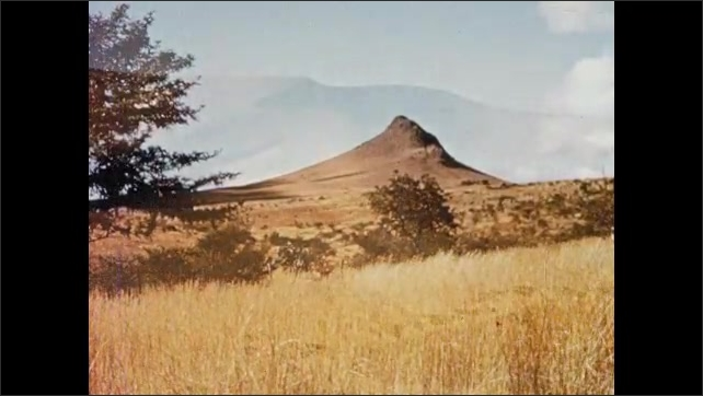 1950s SOUTH AFRICA: Field in coastal lowlands. Mountain range and plateaus. Desert. Antelope and elephants in nature.