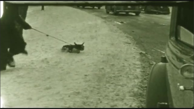 1940s: creek flowing while banks covered with snow, person walking dog in snow, people walking in snow