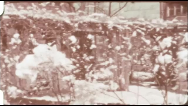 1940s: Snow covers trees and bushes around house.