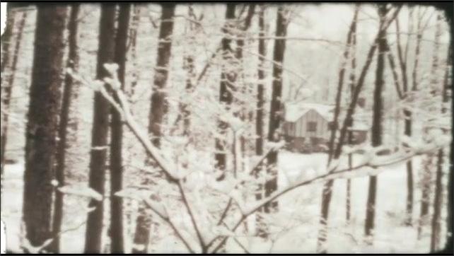 1940s: Snowy trees. Man walks up to house. Dog walks through snowy woods. Window on house.