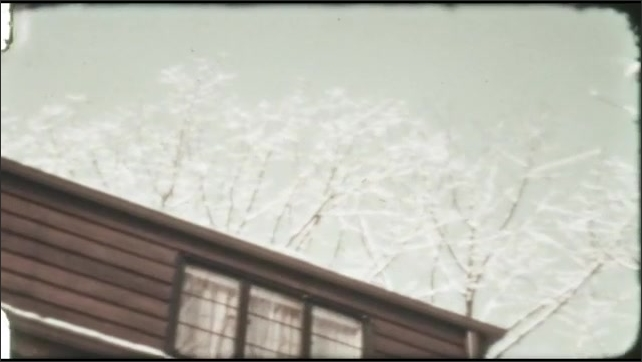 1940s: Birds on window ledge. Snow covered branches. Snow covered landscape. Animal in snow.