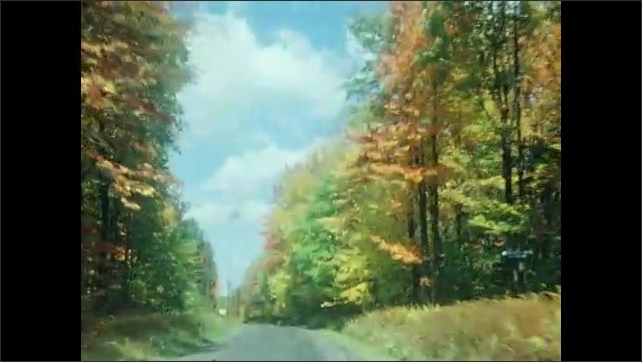 1940s: View from inside car that drives on road with trees in the fall. Car drives on road surrounded by trees in the fall.