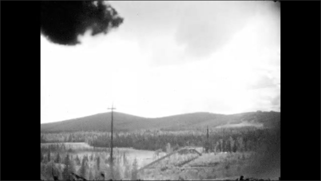 1930s: Pine forest vista. Pine trees and hills.  Home and telephone poles amidst hills and pines.