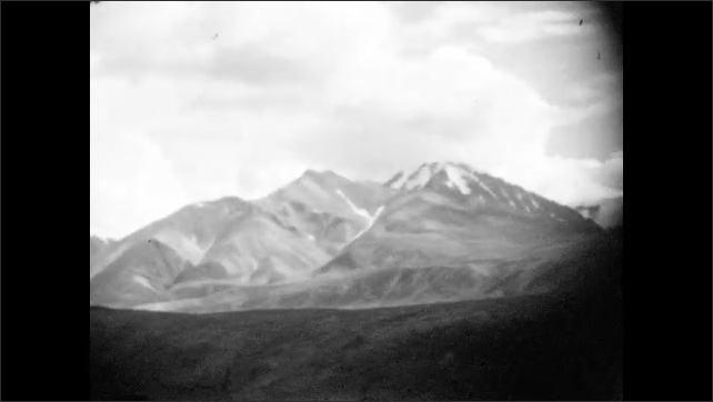 1920s: Snow-capped mountains in the distance. Fields of pine trees.
