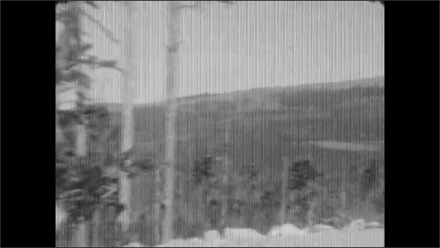 1930's: Car drives down single-lane dirt road towards mountains and through pine forest.