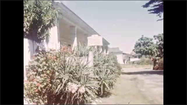 1940s: Different plants in front of a wooden fence. Flower. Cactus. Small road. Purple flower. View from inside car that drives on a road with the sea in background.