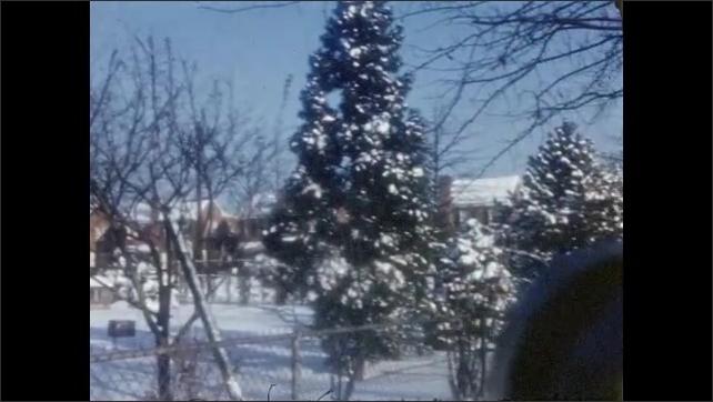 1940s: Snowy residential neighborhood. Woman walks dog through snow.