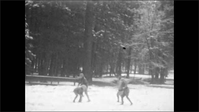 1930s: UNITED STATES: snow falls in forest. Children throw snowballs in forest. Children enjoy snowball fight in woods