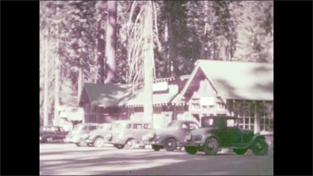 """1930s: Sign: """"BEAR HILL"""". Three bears in an enclosure. Bear walks towards the trees. Cars parked outside of a hotel among the redwood trees. Two rivers meet at bottom of valley."""