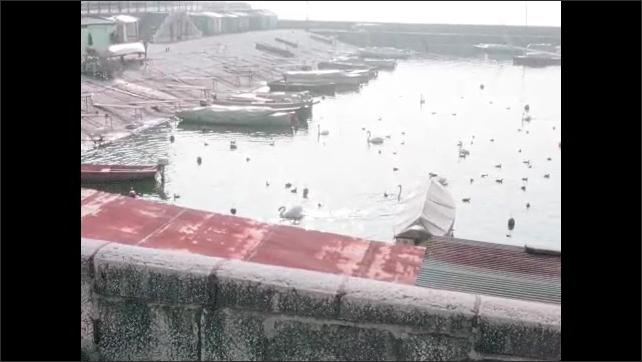 "1970s: City street.  Sign reads ""SAPEURS POMPIERS.""  Pedestrians.  Dog.  Boats.  Birds swim in harbor."