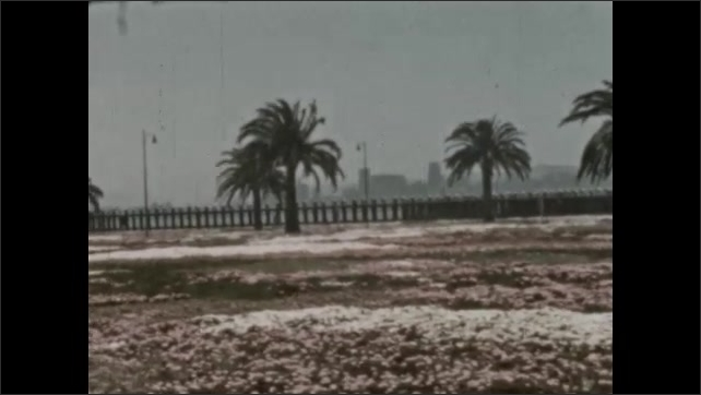 1930s: MEXICO: water by road. Coastal drive. Trees and snow. Buildings in city