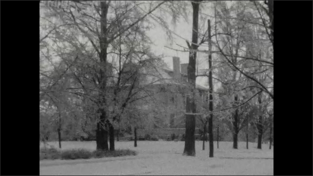 1920s: Three women in fur coats in snowy park. They look at camera, smile and turn away. House through trees. One woman runs with little dog, slides on ice. A tree.