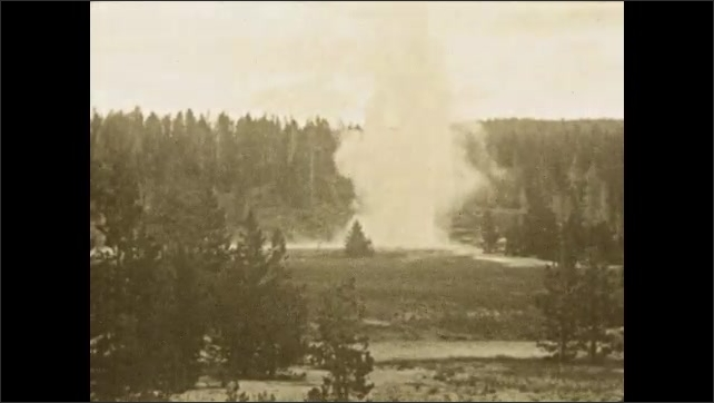 1920s: Water spews out of geyser in park.