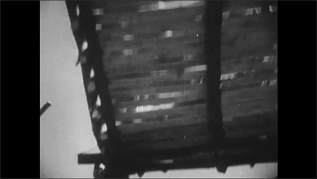 1950s: UNITED STATES: hunters return to village. Men carry wild cats in cage. Tiger in cage. Tiger in cage loaded on to ship