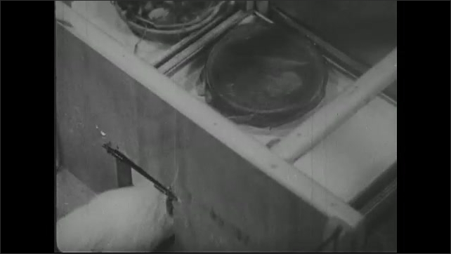 UNITED STATES 1940s ?????Guinea pig goes through door in maze and finds empty bowl.