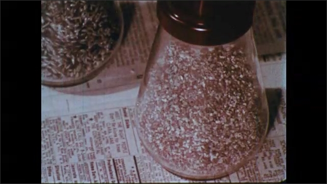 1960s: Girl affixes paper to floor of cage. Container of fine gravel. Girl sprinkles gravel onto cage floor. Tiny gravel bounces and lands on paper-lined cage floor.