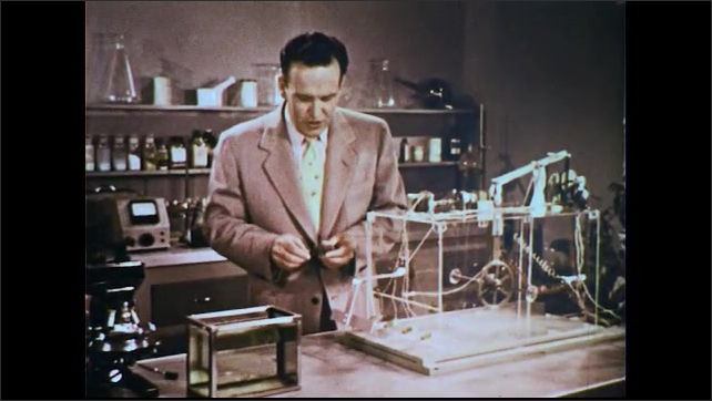 UNITED STATES 1950s: Man in lab with elaborate mousetrap / Man puts fake mouse in trap / Gears moving / Gears moving.